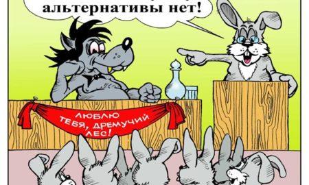 karikatura-pro-vybory-8